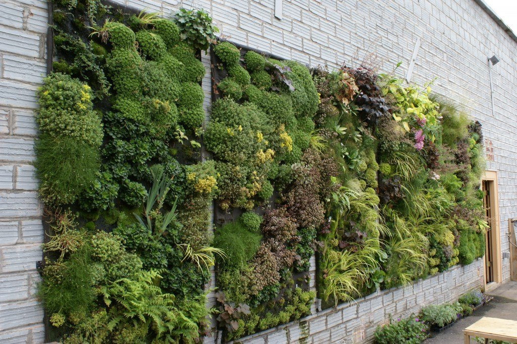 asthetic-urban-vertical-garden.jpg
