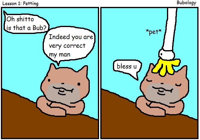 bubology.PNG