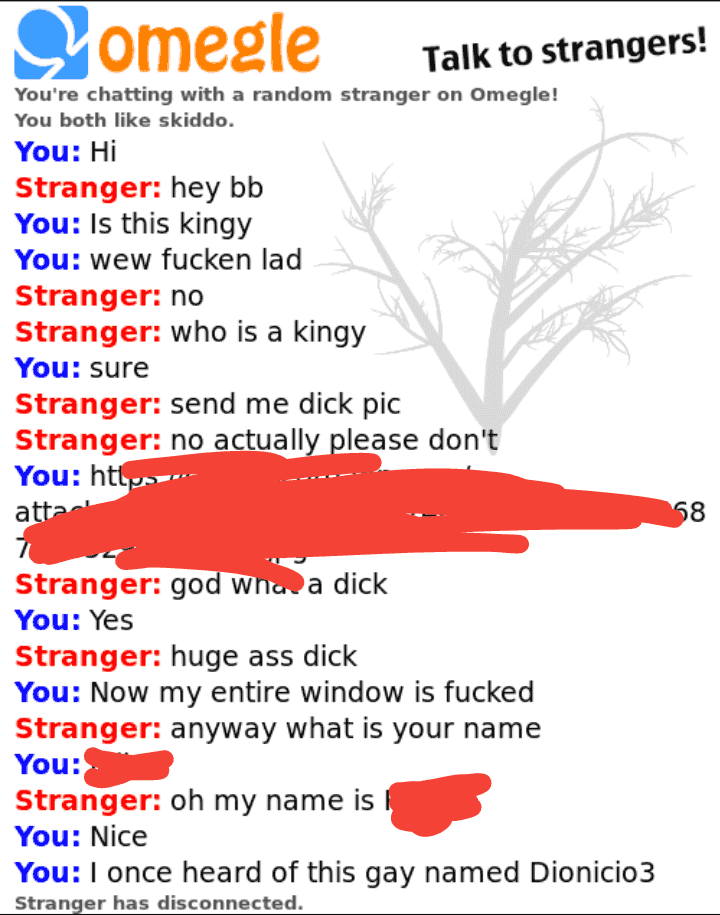 Omegle what is Omegle