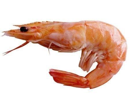 cooked-prawn.jpg
