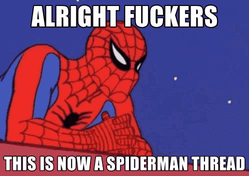 meme_spiderman_fuckers.png