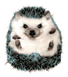 sanicdoithegehog.png