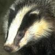 badgerkins