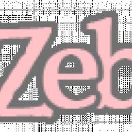 zebulunn