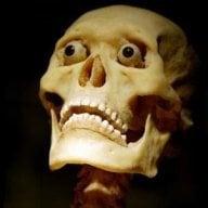 Skelux
