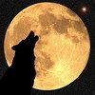 Timberwolf2014