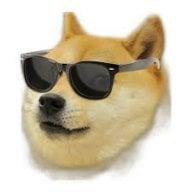 thefinetdoge
