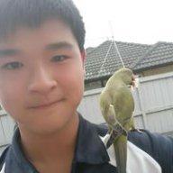 Dan Wu