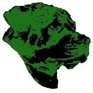 Green;Dog