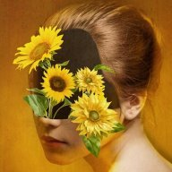 Flower_Zika
