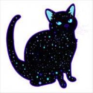Cat_Volta
